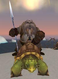 Image of Unu'pe Turtle Rider