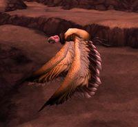 Image of Fleshripper Vulture