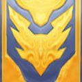 Honor Hold Tabard.jpg