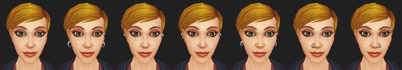 Human female piercings.jpg
