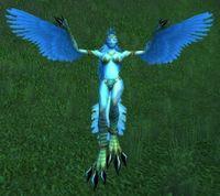 Image of Windfury Harpy