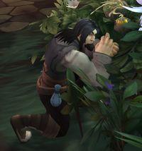 Image of Tradewinds Gardener