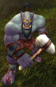 Image of Dragonmaw Raider