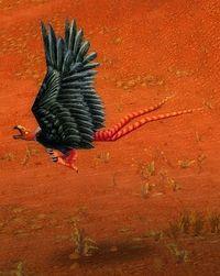 Imagen de Águila ratonera gigante