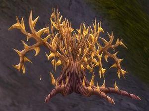 Goldthorn.jpg