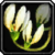 Inv misc flower 03.png