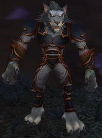 Image of Feral Worgen
