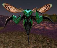 Image of Hazzali Wasp