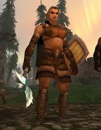 Image of Winterskorn Shield-Maiden