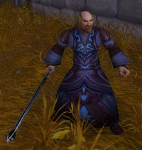Image of Stormwind Mage