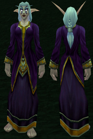 Lesser Wizard's Robe.png