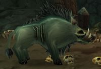 Image of Withered Battle Boar