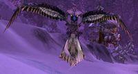 Image of Winterspring Owl