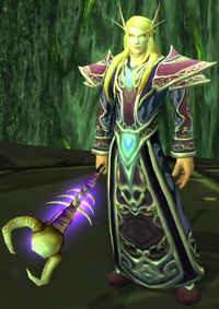 Image of Sunfury Warlock