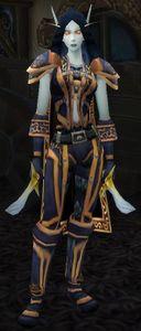 Image of Veteran Dark Ranger
