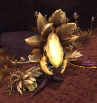 Image of Withered Lasher
