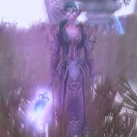 Image of Archmage Selwyn