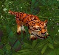 Image of Pei-Wu Tiger Cub