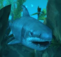 Image of Toothless Great White