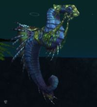Image of Swift Seahorse