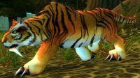 Image of Stranglethorn Tigress