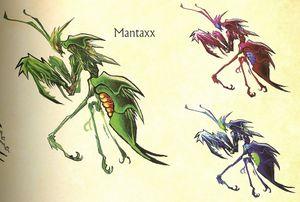Mantaxx.jpg