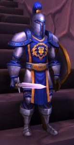 Image of Stormwind Soldier