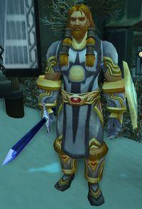 Image of Argent Crusader