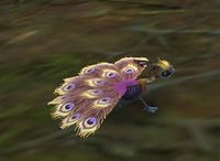 Image of Golden Dawnfeather