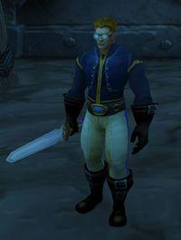 Image of Wing Commander Ichman