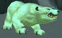 Image of Arctic Grizzly