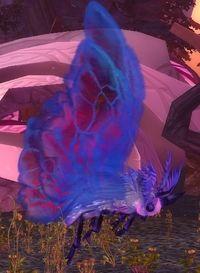 Image of Blue Flutterer