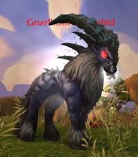 Image of Gnarlhoof the Rabid