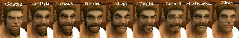 Human Male Facial Hair.jpg