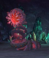 Image of Corborus