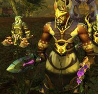 Image of Lightbound Battlemage