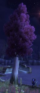 Image of Darkwood Timber