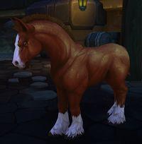 Image of Kul Tiran Horse