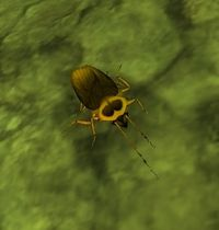 Image of Tainted Cockroach