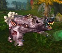 Image of Infested Bear