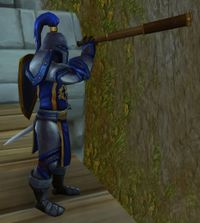 Image of Stormwind City Lookout