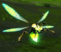 Image of Marsh Hornet