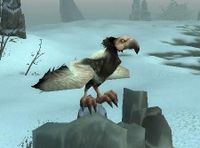Image of Carrion Condor