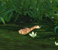 Image of Grove Viper