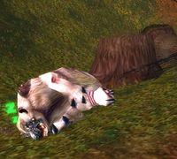 Image of Hibernus the Sleeper