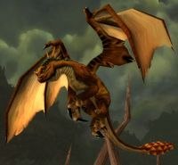 Image of Bronze Drake