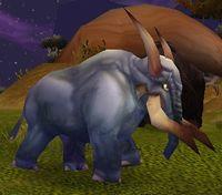 Image of Wild Elekk