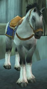 Image of Fordragon Stallion