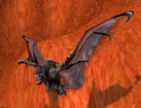 Image of Wounded Forsaken Bat