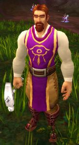 Image of Dalaran Worker